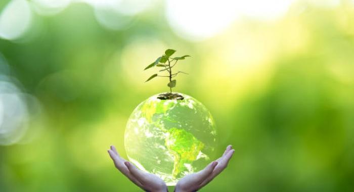 Atitudes ambientais ajudam empresas a andarem na fila e irem à vitrine730x480