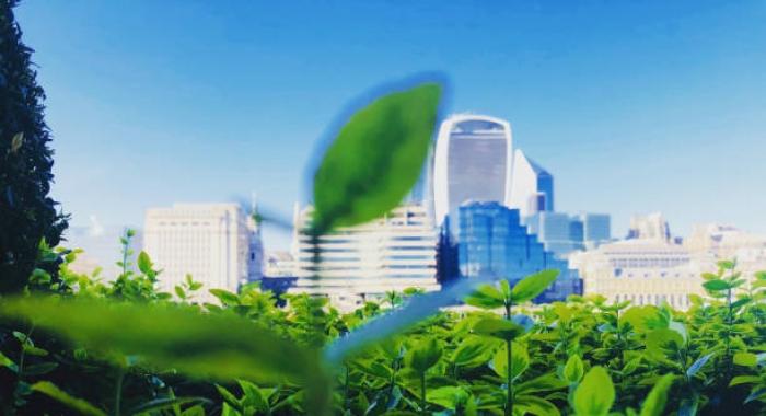 Medidas que as empresas devem tomar para se desenvolverem de forma sustentável.
